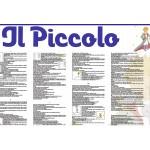The little Prince (Italian Version)